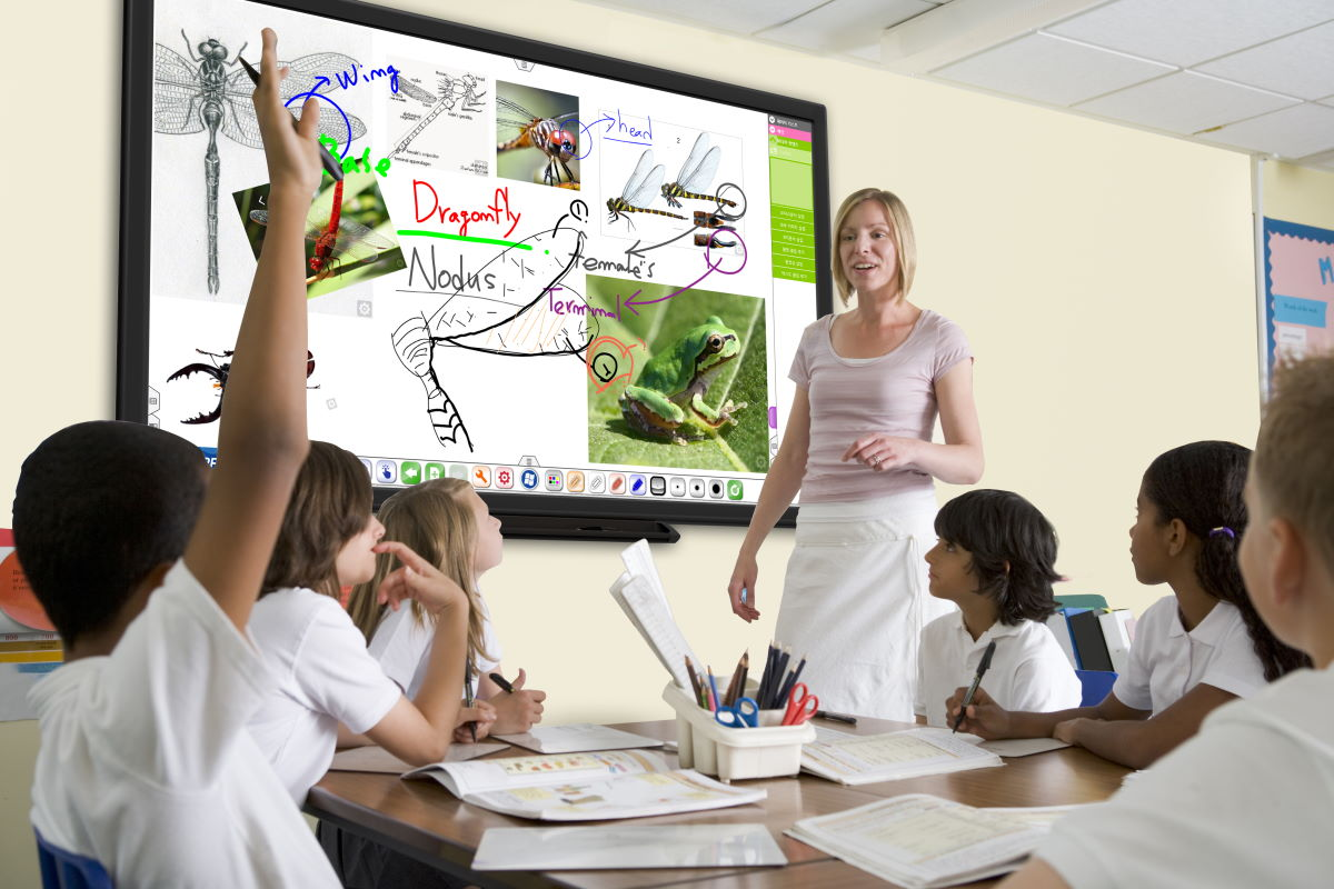 2Touch interactive displays: perfect for the classroom